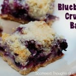 blueberry-bars-003-2
