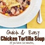 easy-chicken-tortilla-soup-1