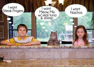 meow-mix-1