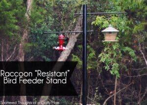 raccoon-proof-bird-feeder-1