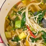 Asian Chicken and Veggie Soup