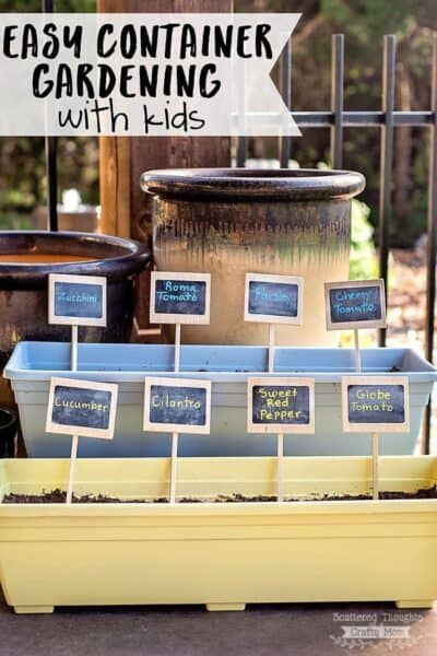 How to Grow a Container Garden with Kids