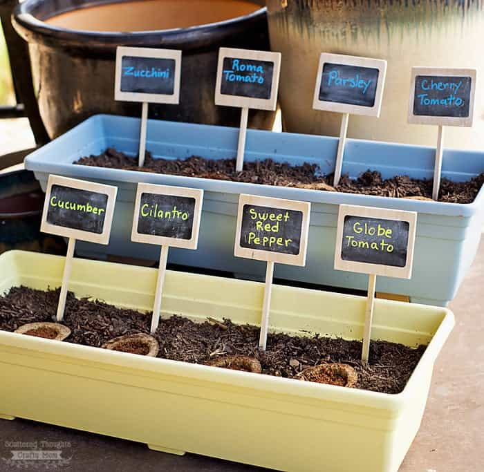 how to grow a container garden
