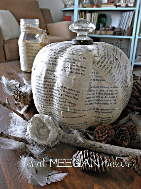 book-page-pumpkin-surrounded-with-feathers-and-pine-cones