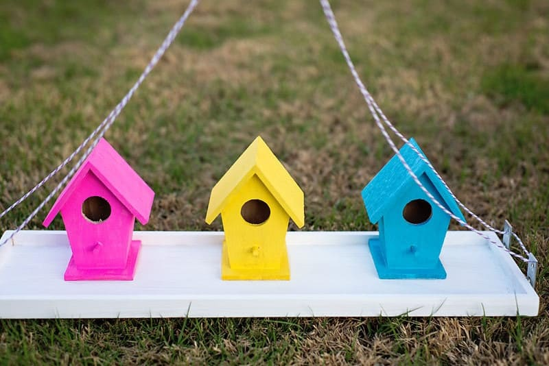 easy bird feeder craft
