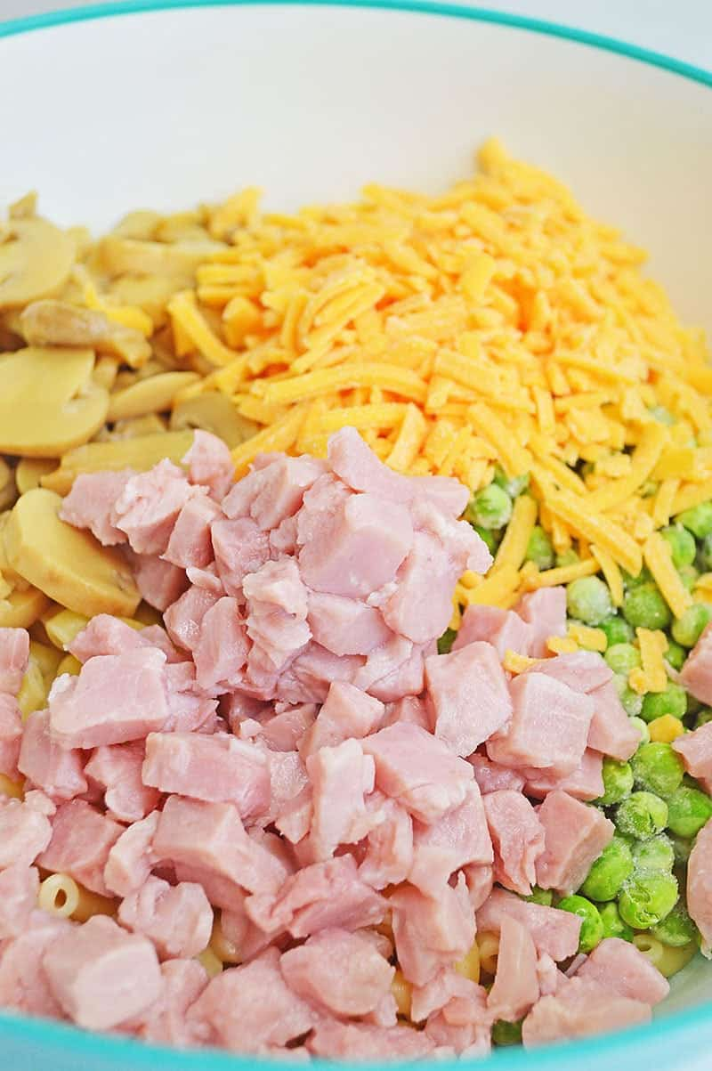 pasta salad with ham and cheese